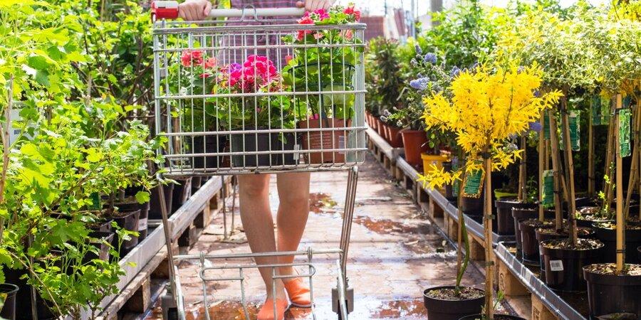 Tuinbranche wil verkoop vanaf buitenterreinen