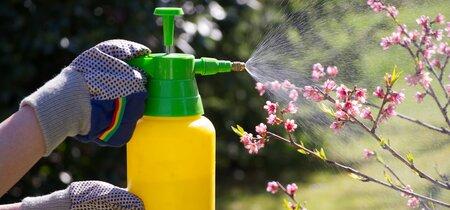 Gebruiksverbod gewasbeschermingsmiddelen op verhardingen ongegrond verklaard