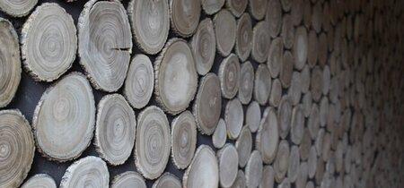 Duurzaam adviseren over hout en houtproducten